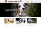Felixetvasco.com